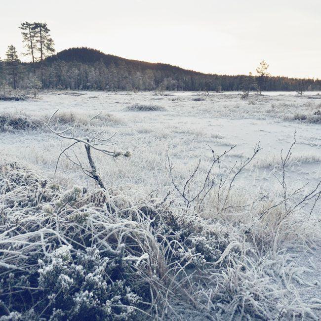 Långsjon www.malinbohm.se